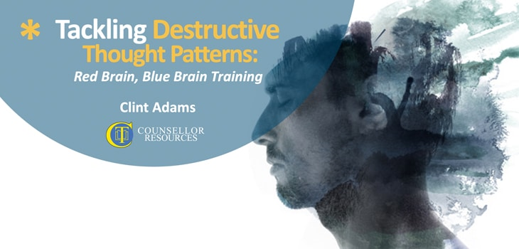 Tackling Destructive Thought Patterns - CPD lecture